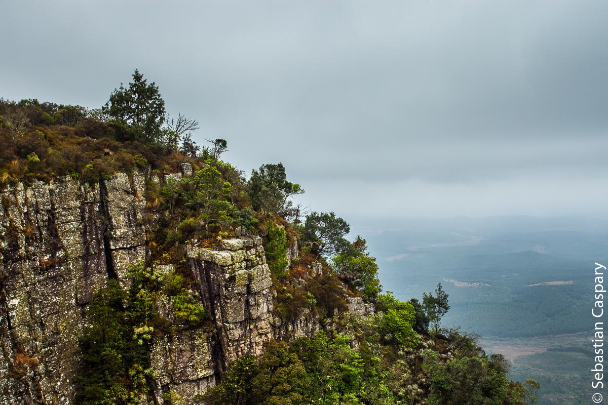 Blick ins Lowveld von God's Window, nahe der Panoramaroute.
