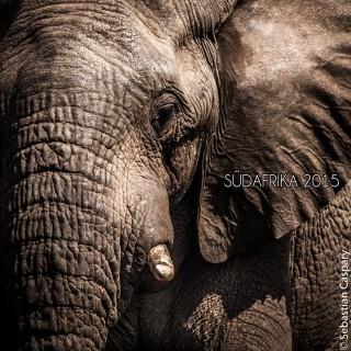 Südafrika 2015