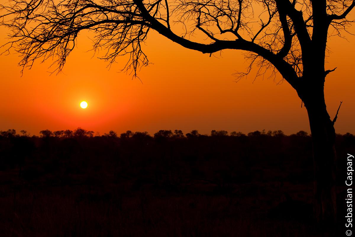 Der südafrikanische Sonnenuntergang.