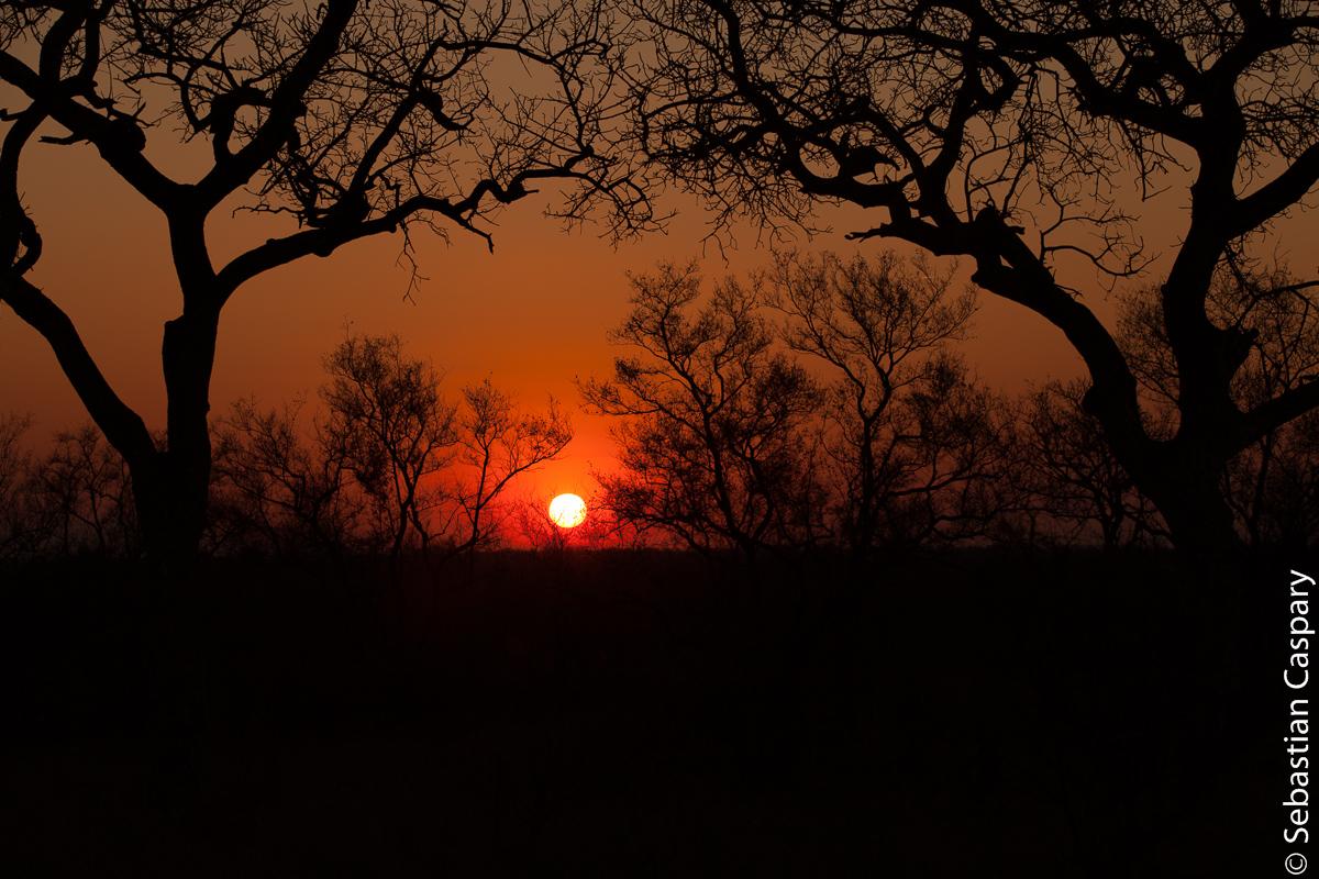 Sonnenuntergang im Krügerpark.