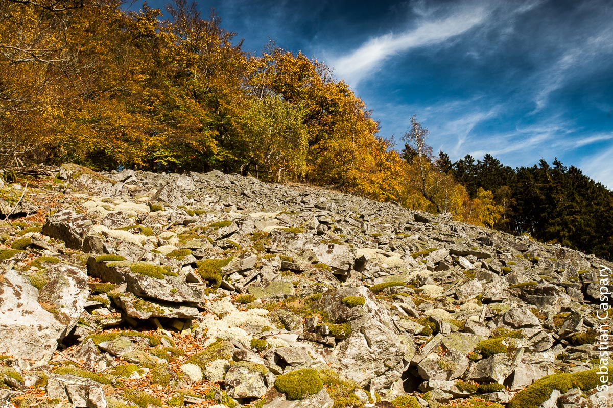 Rosselhalde im Herbst, Mörschieder Burr