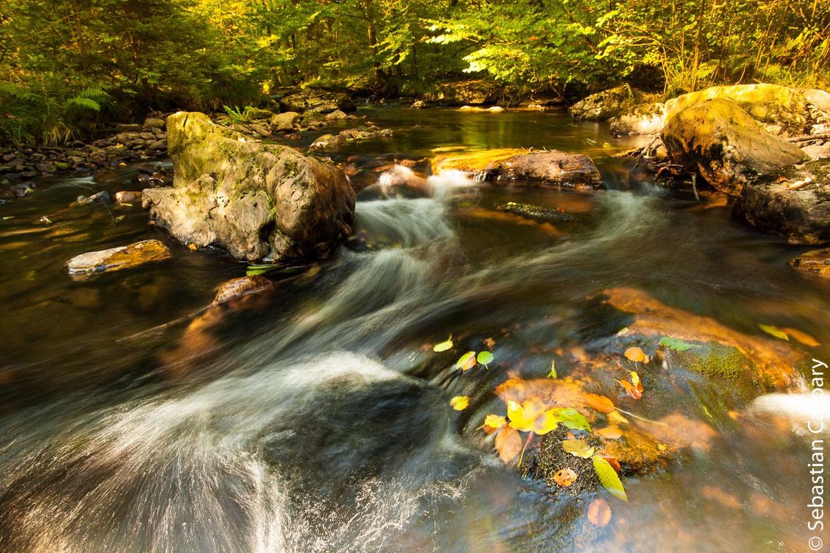 Traunbach im Herbst, bei Abentheuer
